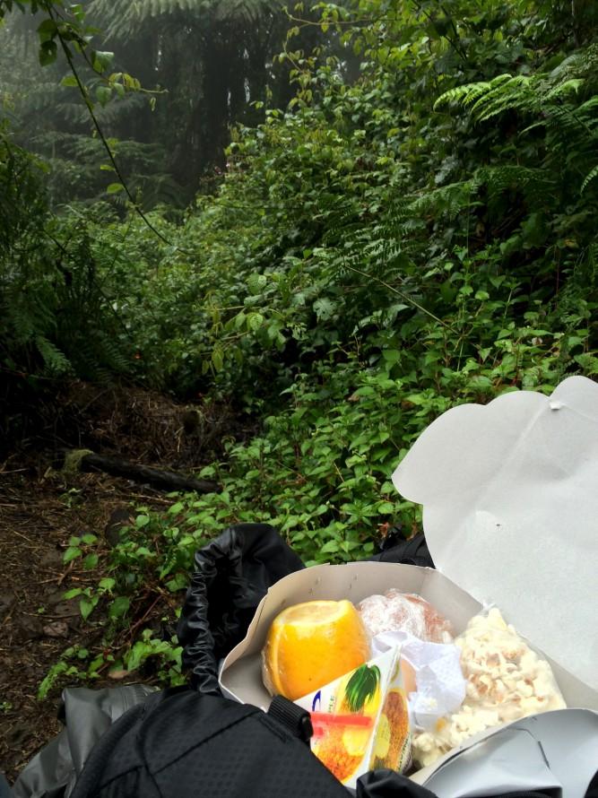 picnic dag 1