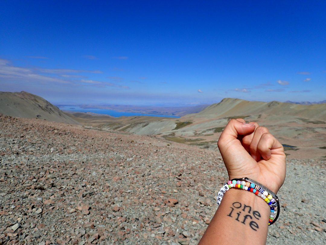 Stag Saddle - Te Araroas högsta punkt. Hade jag lyssnat på alla andra hade jag aldrig kommit dit.
